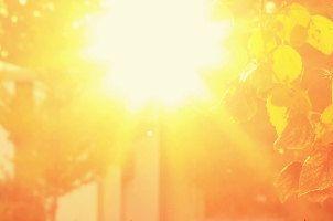 quote Over de zon-en schaduwkant van het leven-Power2Blossom