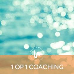 diensten 1 op 1 coaching zee v